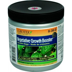 Vegetative Growth Booster 300 GR